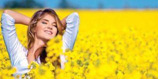 Planta care aduce fericirea: sunatoarea - beneficii miraculoase