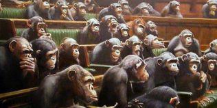 Chinezii au creat maimute autiste prin inginerie genetica, care vor fi folosite la testarea tratamentelor pentru oameni