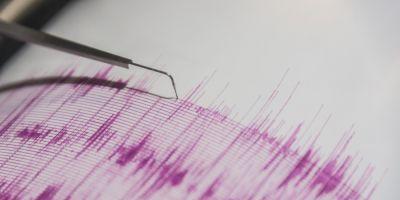 Un cutremur de 4,1 pe Richter a zguduit Vrancea