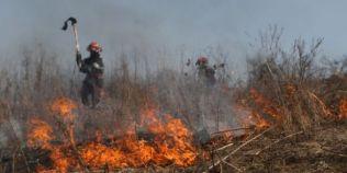Cat de proasta este practica incendierii voluntare a vegetatiei: