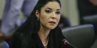 Ana Birchall, in comisii: Romania este gradina Maicii Domnului. Presedintia UE este urmatorul proiect de tara