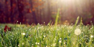 Prognoza meteo pentru urmatoarele doua saptamani: temperaturi de vara incepand cu acest weekend